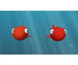 Les fraîches chroniques de la mer